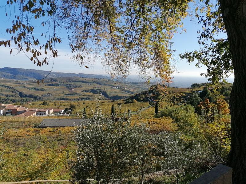 Valpolicella panorama da Santa Maria Valverde