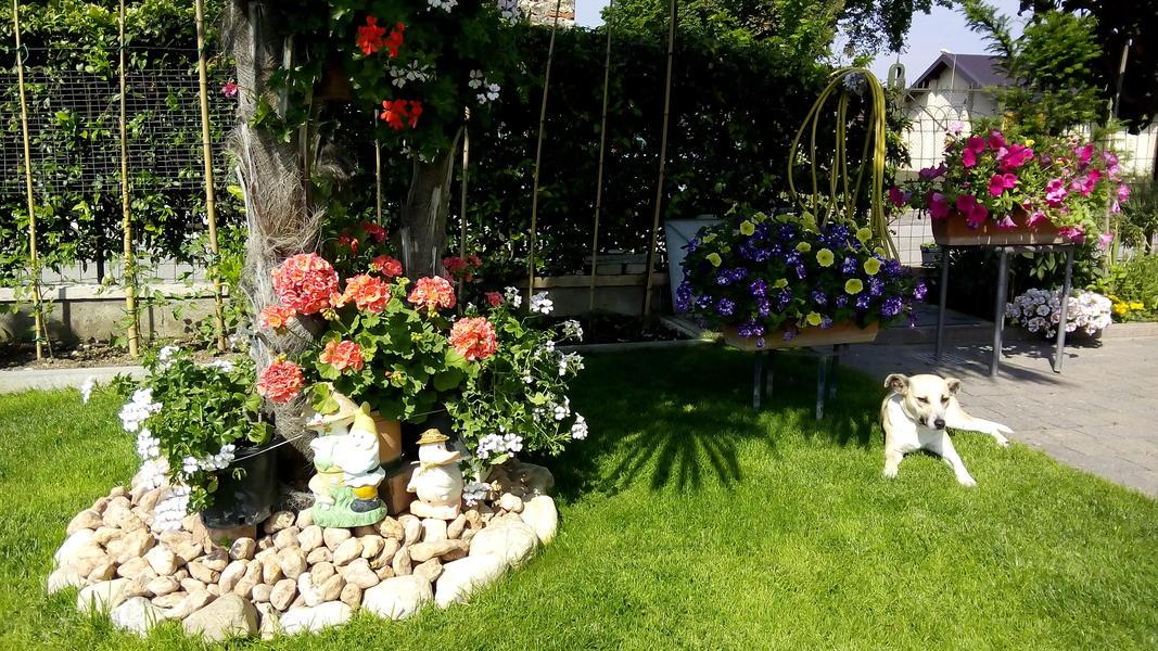 B b il giardino a peschiera del garda - B b il giardino trento ...